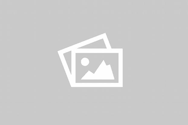Coste extra Cuerpo Telecaster Crema doble binding