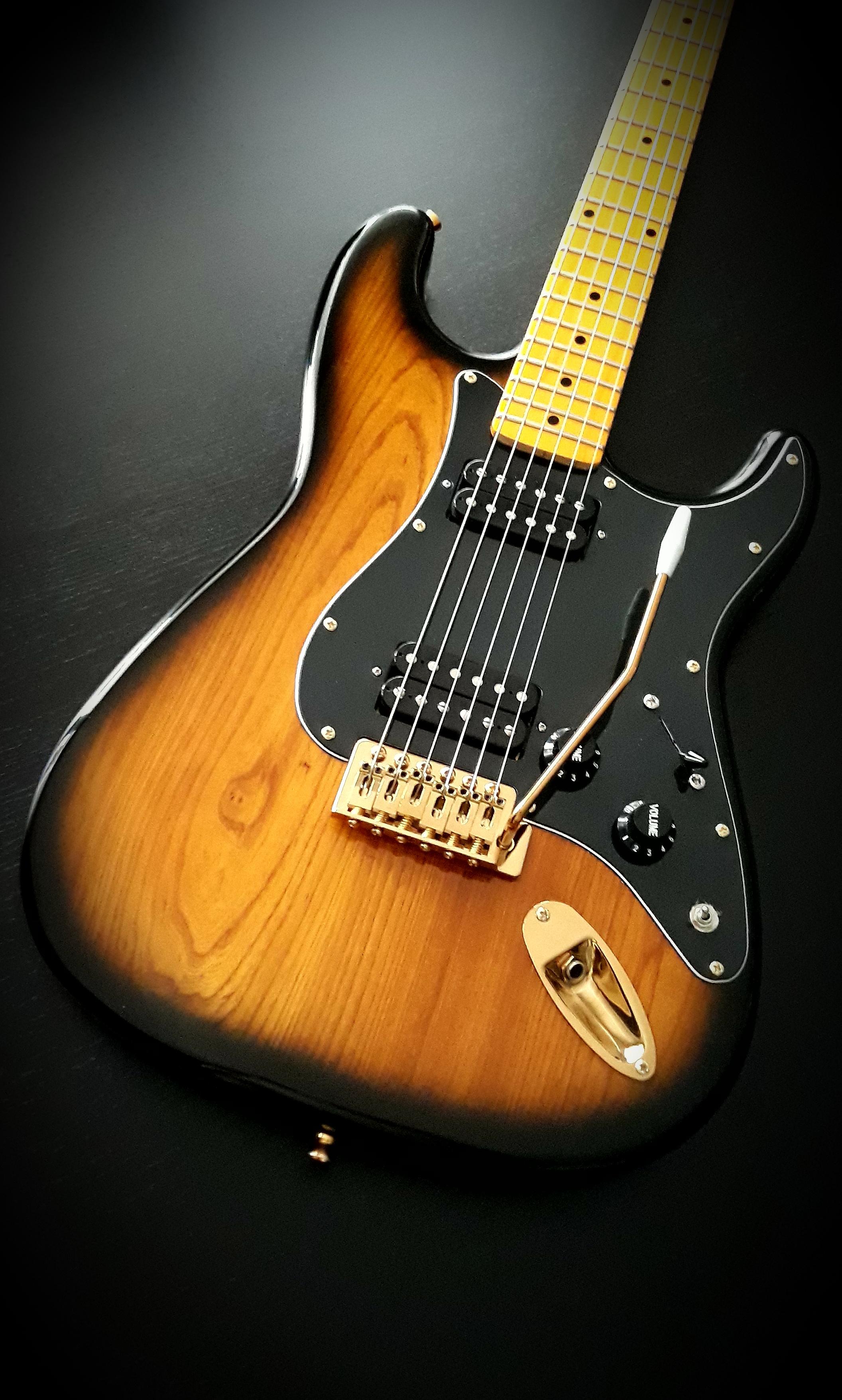 Daniel Stratocaster Fresno 2 tone 1